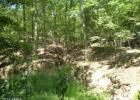 River Rd, Fisher, WV 26818, $64,900
