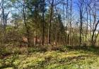 5 Victoria Heights Rd, Louisa, KY 41230, $19,900