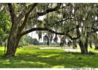 4135 E Highway 318, Citra, FL 32113, $6,450,000 5 beds, 2.5 baths