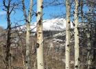 26510 Beaver Canyon Dr, Clark, CO 80428, $149,000