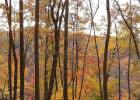 5 Blakes Way, High View, WV 26808, $25,000