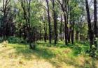 211 Mile Hill Rd, Boylston, MA 01505, $1,400,000