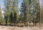LOT-7 Gracies Rd, Gilchrist, OR 97737, $19,900
