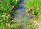 P-C N Camp Creek Rd, Salem, AR 72576, $31,500