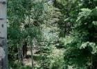 1 Acre Year-Round Access, Bethune, CO 80805, $11,900
