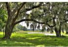 4145 E Highway 318, Citra, FL 32113, $3,675,000 5 beds, 2.5 baths