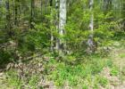 49 Onteora Rd, Highland Lakes, NJ 07422, $30,000