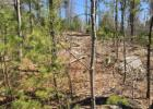 Forest Rd Map #V5LOT19, Greenfield, NH 03047, $127,499