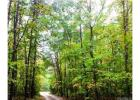 Long Creek Rdg, Bumpass, VA 23024, $60,000