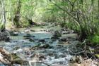 Wheelers Cove Rd, Shipman, VA 22971, $134,900