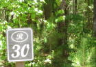 30 Buttonbush Dr, Ravenel, SC 29470, $55,000