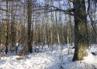 N Pond Rd, Warren, ME 04864, $79,900