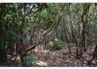 9999 Summer Haven Rd, Swannanoa, NC 28778, $38,000