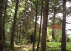 486 Lookout Dr, Gleneden Beach, OR 97388, $65,000