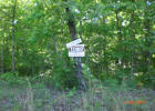 Melody Ln, Williford, AR 72482, $2,500