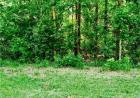Possum Holler, Votaw, TX 77376, $4,000