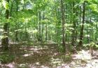 Vacant lot in Nunnelly  TN - 37137