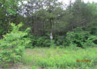 361 Shore Acres Dr, Powersite, MO 65731, $38,900