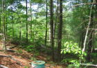 Vacant lot in Townsend  TN - 37882