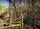 County Road 489, Etowah, TN 37331, $175,000