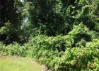 Harland Rd, Norwich, CT 06360, $45,900