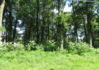 171 Evergreen Ln, Catawissa, PA 17820, $68,900