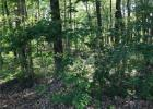 County Road 500 N, Fillmore, IN 46128, $10,000