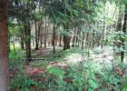 Lot 7 Blue Vista Dr, Evart, MI 49631, $17,900