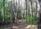 Herbert Ln, Jamestown, SC 29479, $155,346