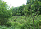 Vacant lot in Guilford  NY - 13780