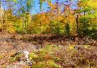 147 Adams Rd, Chesterville, ME 04938, $18,000