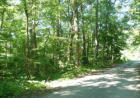 Vacant lot in Speedwell  TN - 37870