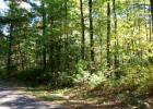 LOT 33 Point O Pines Road, Manitowish Waters, WI 54545, $27,900