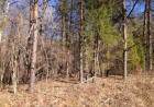 Vacant lot in Ten Mile  TN - 37880