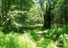 Vacant lot in Schodack Landing  NY - 12156