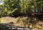 Vacant lot in Spring City  TN - 37381