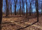 Tbd Lilly Farm Ln, Greenville, VA 24440, $60,000