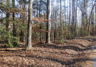 County Pond Rd, Freeman, VA 23856, $27,500
