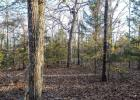 County Road 603, Pontiac, MO 65729, $18,500