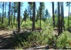 Pine Creek Rd #2, Bickleton, WA 99322, $124,000