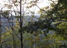 Coleman Clf, Frankford, WV 24938, $30,000