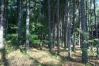 N A Deer Haven Rd, Axton, VA 24054, $215,000