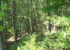 Tbd Countryside Dr, Blackstock, SC 29014, $7,000