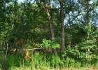Lot 5 Horse Creek Rd, Cranberry, PA 16319, $24,900