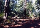 Ranch Rd, Pescadero, CA 94060, $359,000