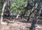 Mountain View Rd, Boonville, CA 95415, $215,000