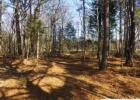 Mill Race Dr, Ardmore, TN 38449, $44,900