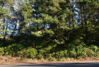 Tl 1800 Cape Kiwanda, Pacific City, OR 97135, $75,000