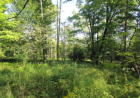 Vacant lot in Remsen  NY - 13438