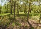Vacant lot in White Bluff  TN - 37187